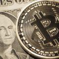 億万長者のノボグラッツ氏、資産の10%は仮想通貨